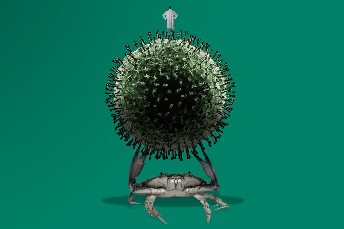 Los pacientes de cáncer están sufriendo la pandemia del coronavirus y del abandono.