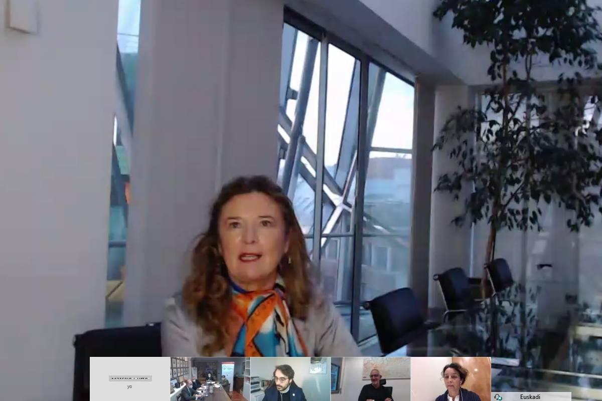 Gotzone Sagarduy, consejera vasca de Salud, en el encuentro virtual.