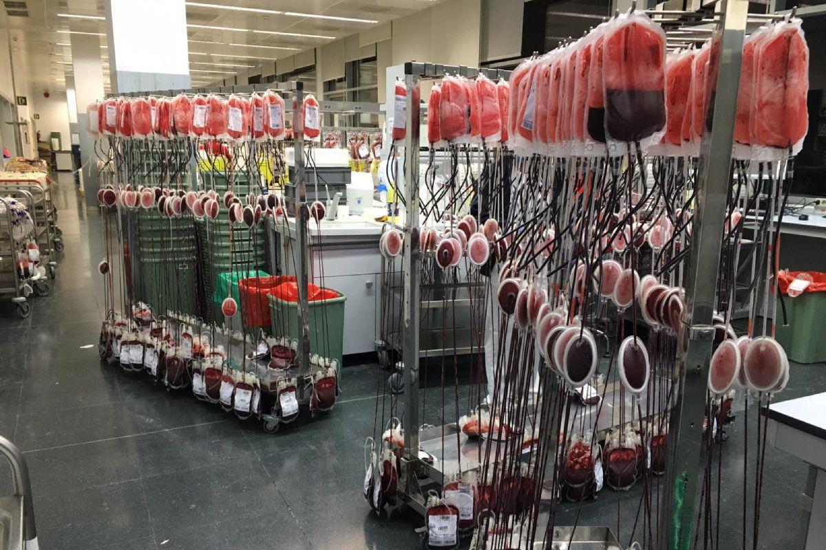 Los hospitales madrileños necesitan 5.000 bolsas de sangre en Semana Santa.