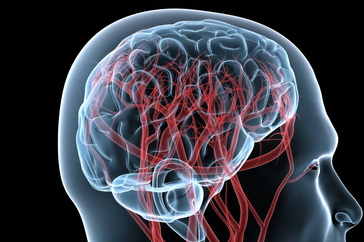 La falta de control de la epilepsia se asocia a un incremento de la morbimortalidad.