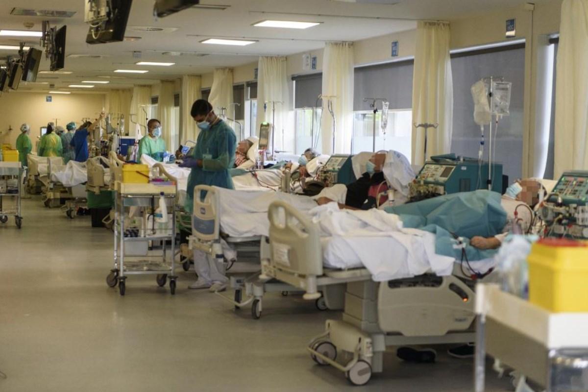 La fibrosis renal es la principal alteración que conduce a la insuficiencia renal, una enfermedad solo tratable hoy en día con diálisis