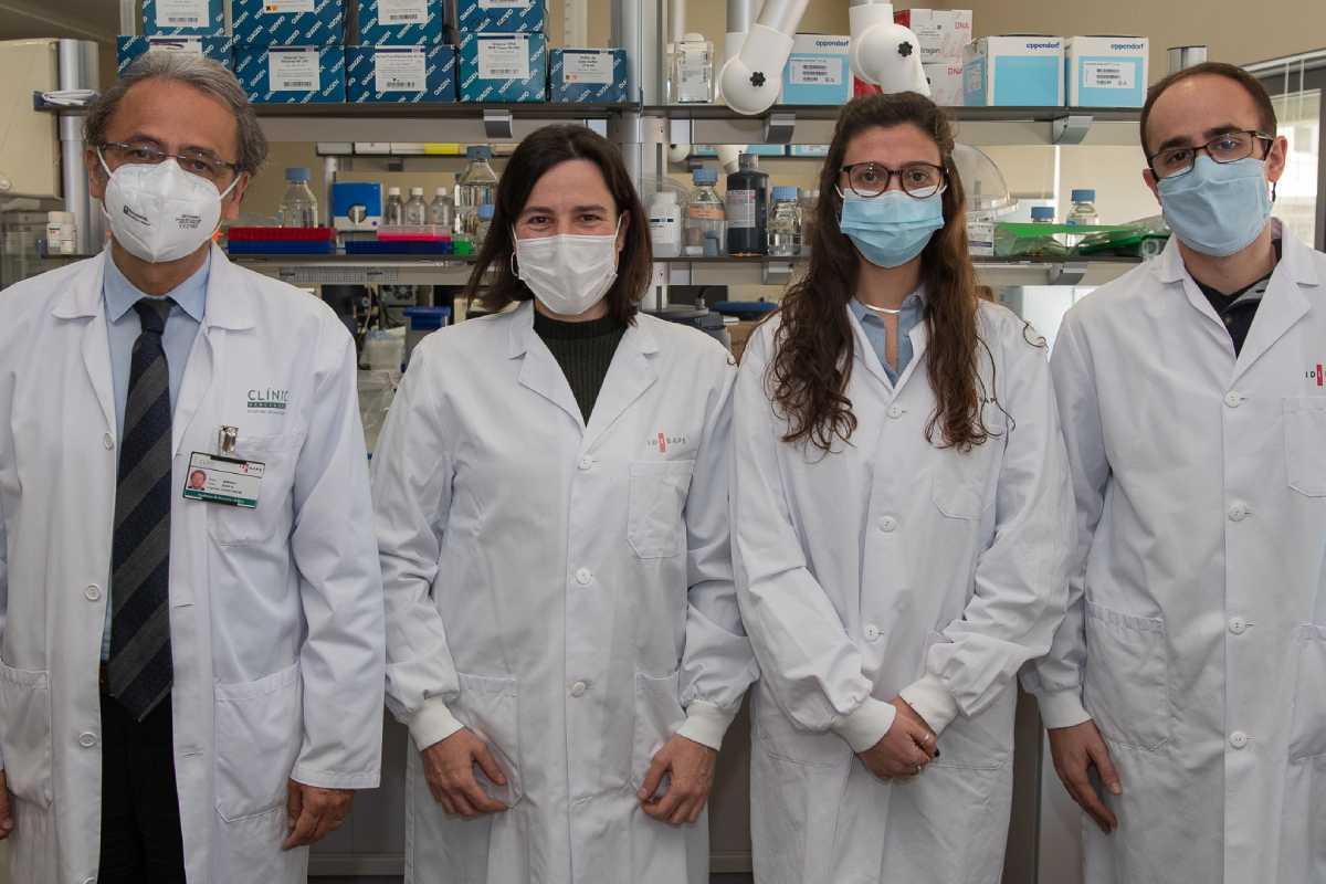 Josep Maria Llovet, Roser Pinyol, Carla Montironi y Florian Castet, autores principales del estudio..