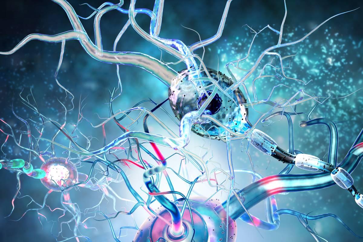 Según Neuraxpharm, LepsiApp permite a los pacientes tener un mayor conocimiento de su estado de salud y, a la vez, ofrece soluciones innovadoras a los médicos, en concreto a los neurólogos.