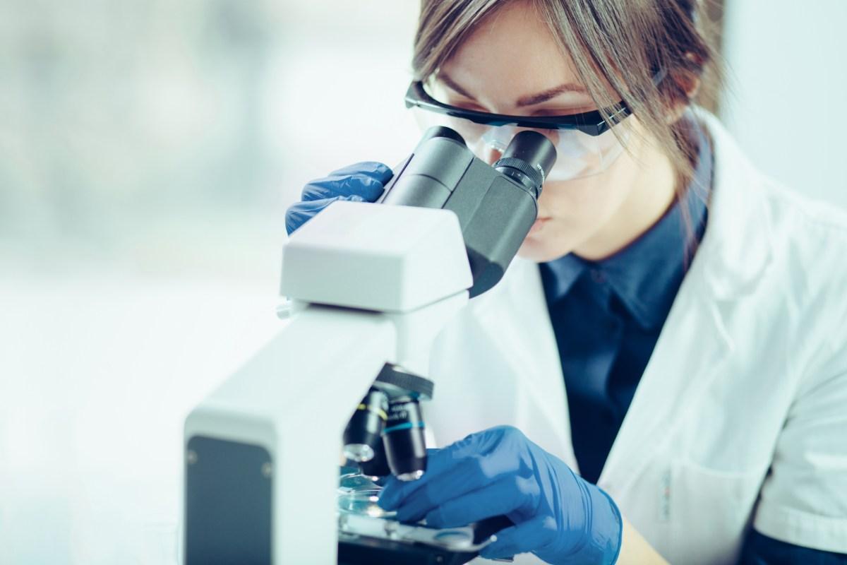 """Los autores destacan que, a raíz de la pandemia, """"los farmacéuticos están demostrando hasta qué punto son parte integral"""" de los sistemas sanitarios."""