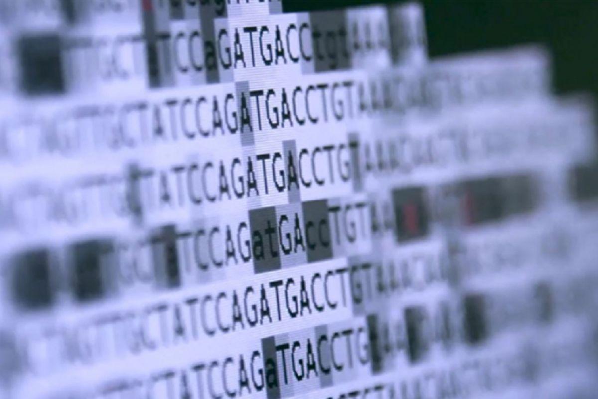 Conocer los datos genómicos de todos ensayos clínicos son esenciales para avanzar en el control del cáncer de mama. FOTO/DM.