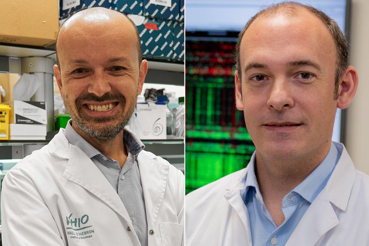 Paolo Nuciforo y Aleix Prat, coordinadores del nuevo estudio en cáncer de mama HER2+. FOTO: VHIO.