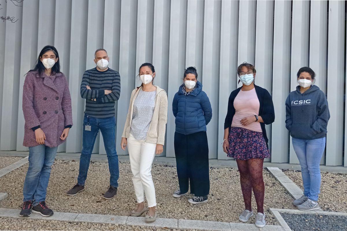 Lucía Gutiérrez, Jesús Martínez de la Fuente, Laura Asín, Raluca Fratila, Lilianne Beola y Yilian Fernández, investigadores de esta nueva terapia. FOTO. CIBERISCIII.