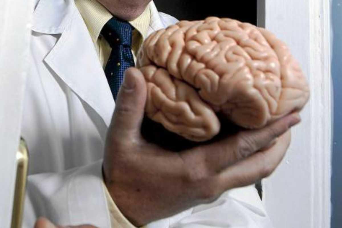 El cerebro sigue siendo un enigma.