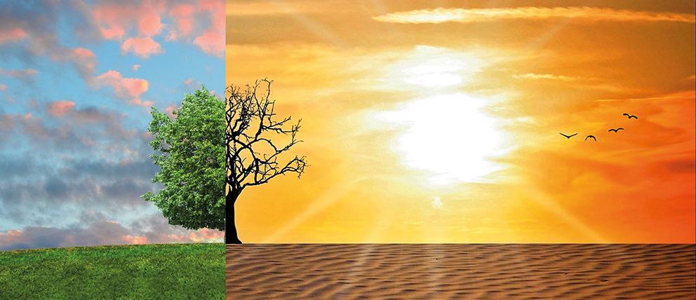 Lucha cambio climático