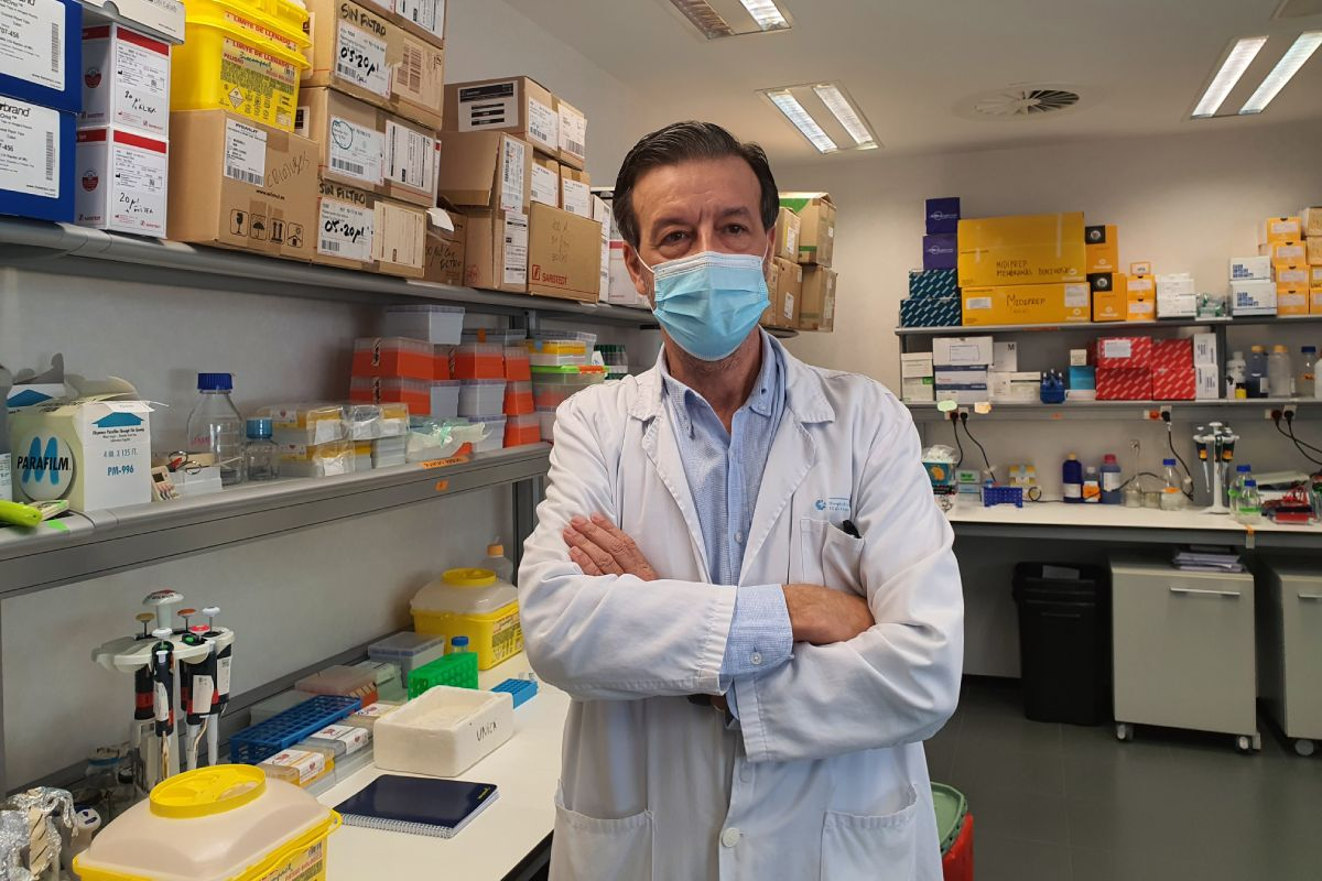 Luis Álvarez-Vallina, director de la Unidad de Inmunología del Cáncer del Instituto de Investigación del Hospital 12 de Octubre i+12, de Madrid. FOTO: Hospital 12 Octubre.