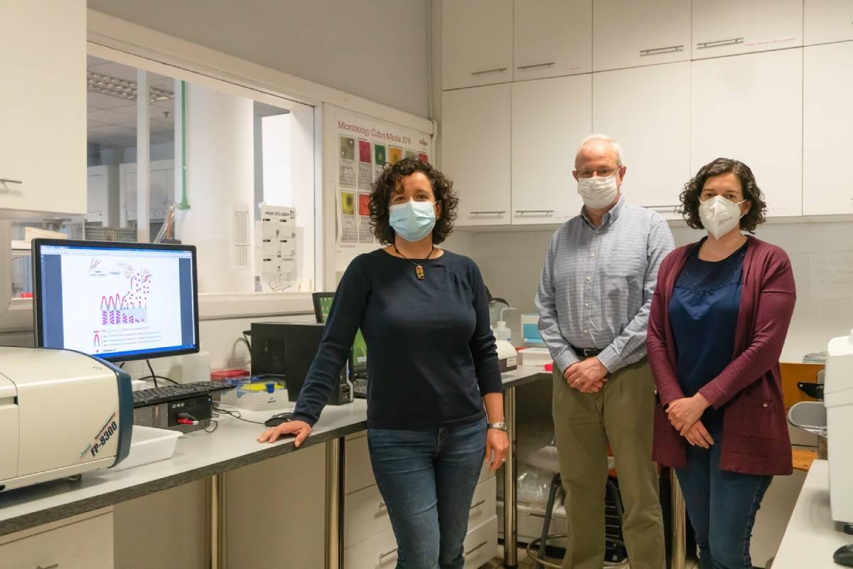 Mari Carmen Mart�nez Bisbal, Ramón Mart�nez Máñez y Elena Aznar, tres de los investigadores del proyecto.