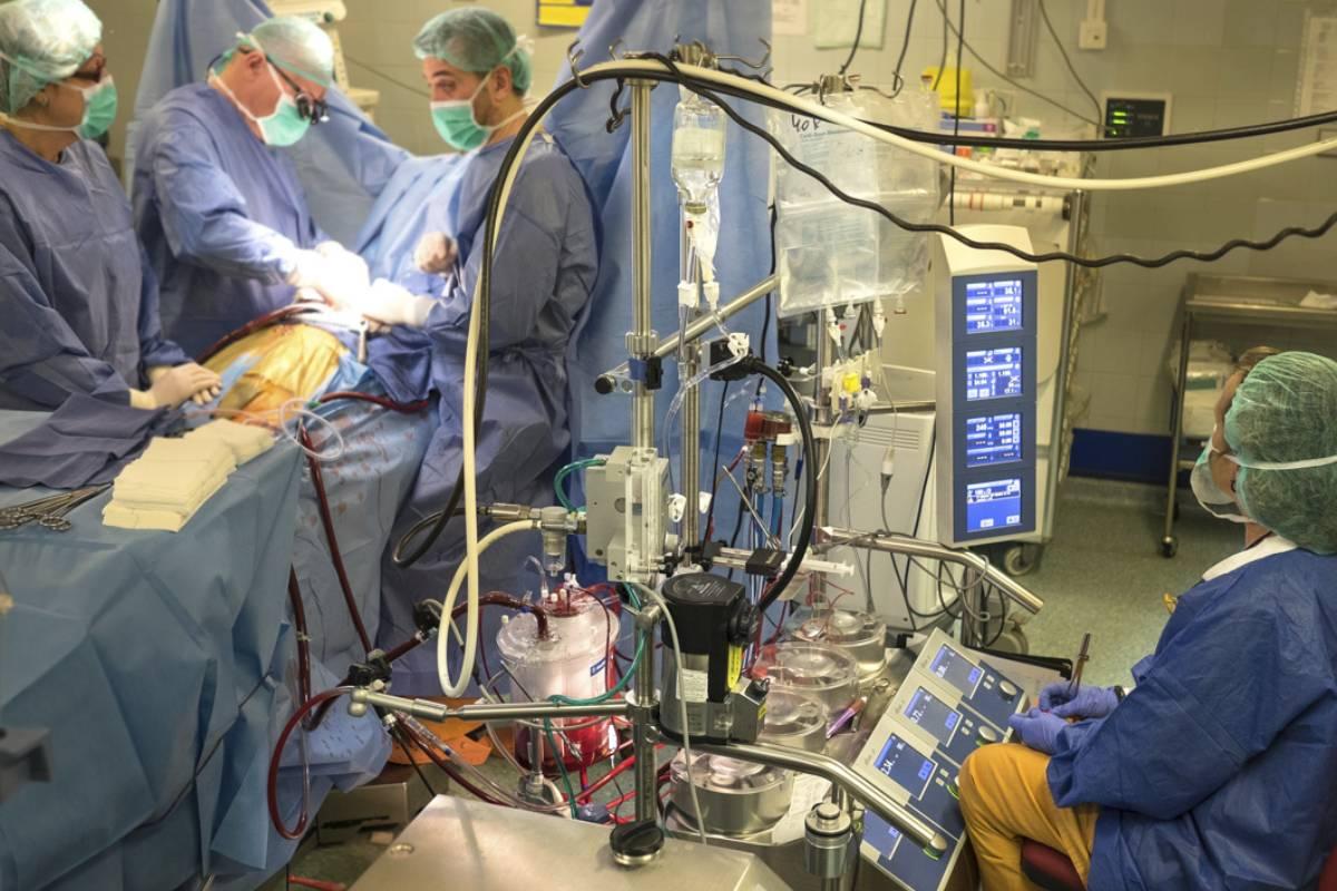 Momento de una intervención para trasplantar órganos.