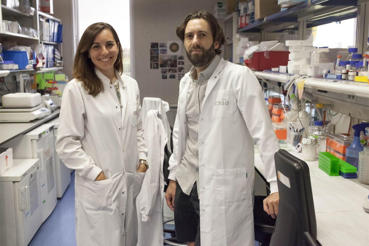 Ana Ortega y Alejo Efeyan, del Centro Nacional de Investigaciones Oncológicas (CNIO), y autores del nuevo hallazgo. FOTO: CNIO.