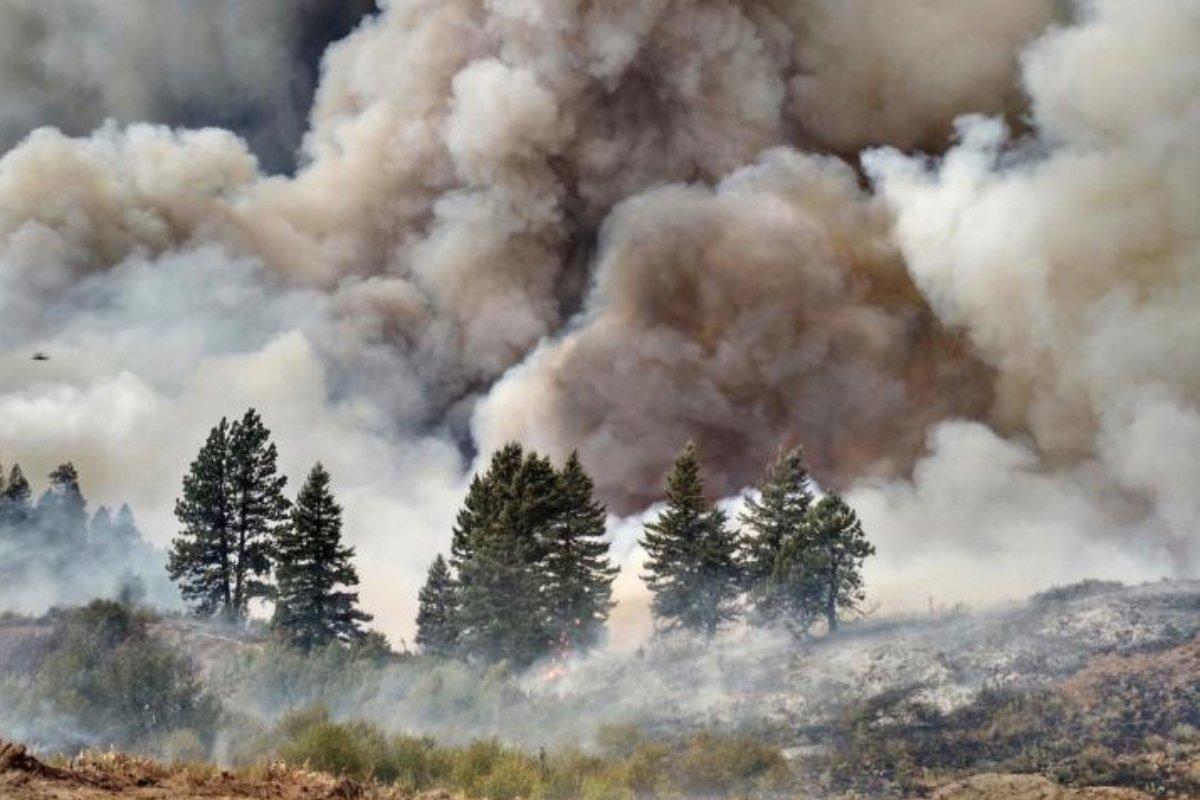 El humo de los incendios forestales puede favorecer la propagación del coronavirus.