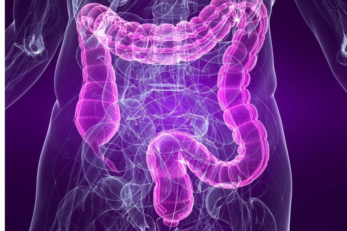 El síndrome de intestino irritable produce diarrea, hinchazón y malestar abdominal. FOTO: CIC BioGUNE.
