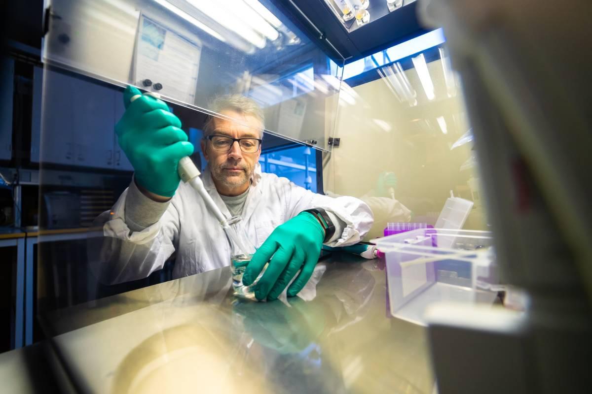 Thomas Brodin, profesor universitario de ecolog�a acuática en Suecia y uno de los mayores expertos mundiales en farmacontaminación.