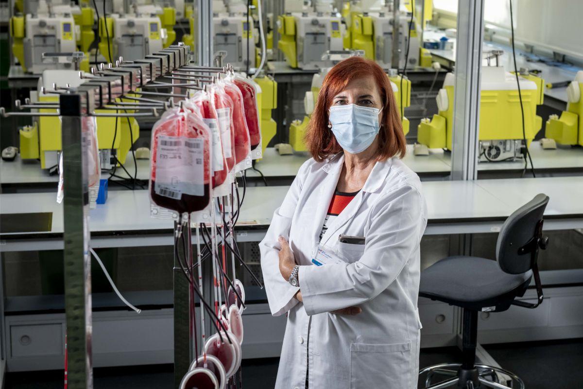 Luisa Barea, directora gerente del Centro de Transfusión de la Comunidad de Madrid. FOTO: José Luis Pindado.