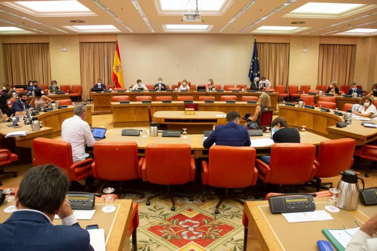 Reunión de la Diputación Permanente del Congreso de los Diputados celebrada el 25 de agosto.