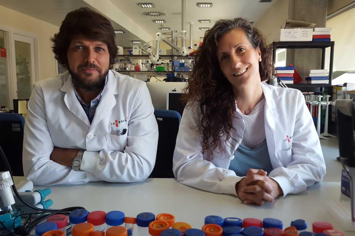 Marc Claret y Alicia Garcia forman parte del grupo grupo de investigación de Control neuronal del metabolismo del Idibaps.