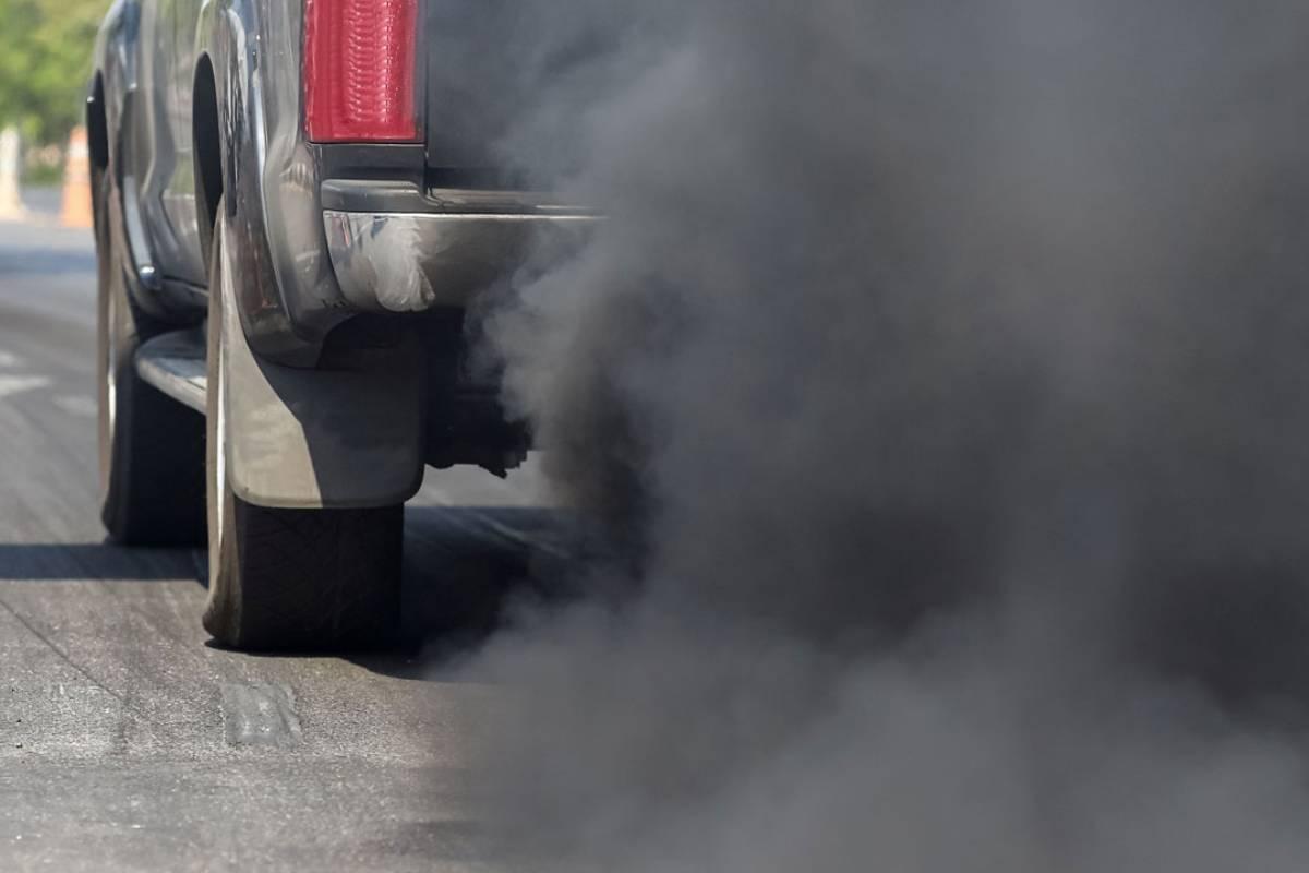 La crisis sanitaria redujo la movilidad del tráfico y la presencia de dióxido de nitrógeno en el aire.