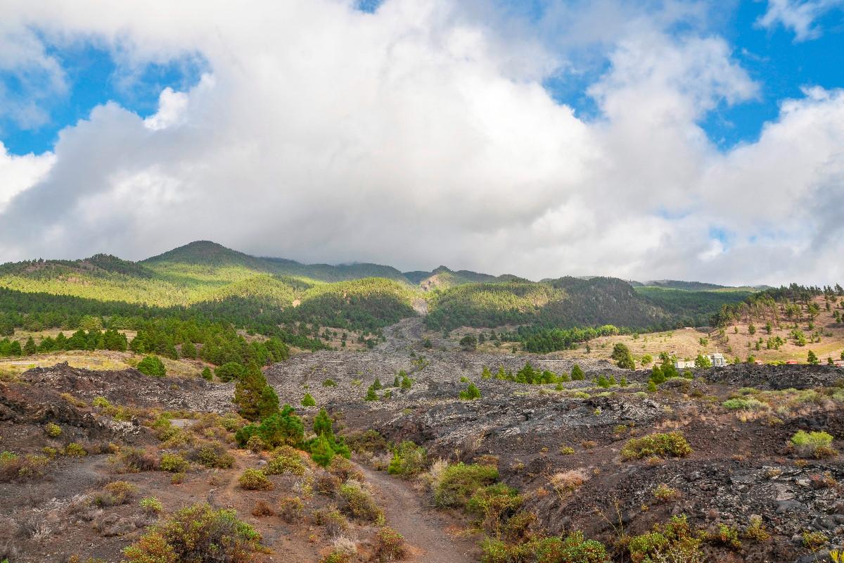 Imagen tomada este viernes de la colada del volcán San Juan, en La Palma, en la zona donde se han concentrado estos días los miles de pequeños movimientos sísmicos registrados desde hace una semana en la isla. EFE/Miguel Calero
