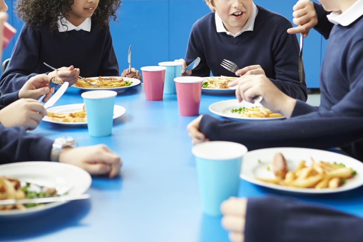 La Seaic recomienda que se identifique a los niños alérgicos a alimentos, detallando cuáles son las sustancias que generan la alergia en cada caso.