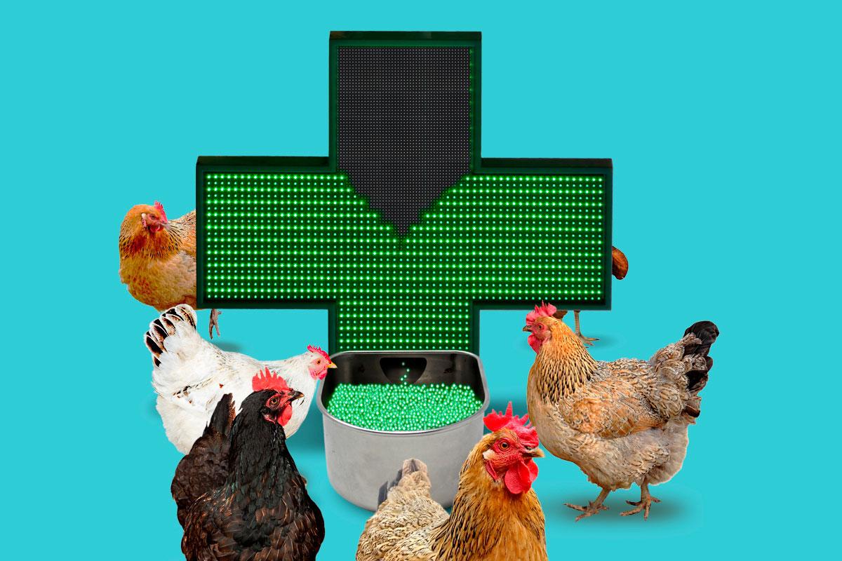Los farmacéuticos reclaman un buen uso del medicamento veterinario.