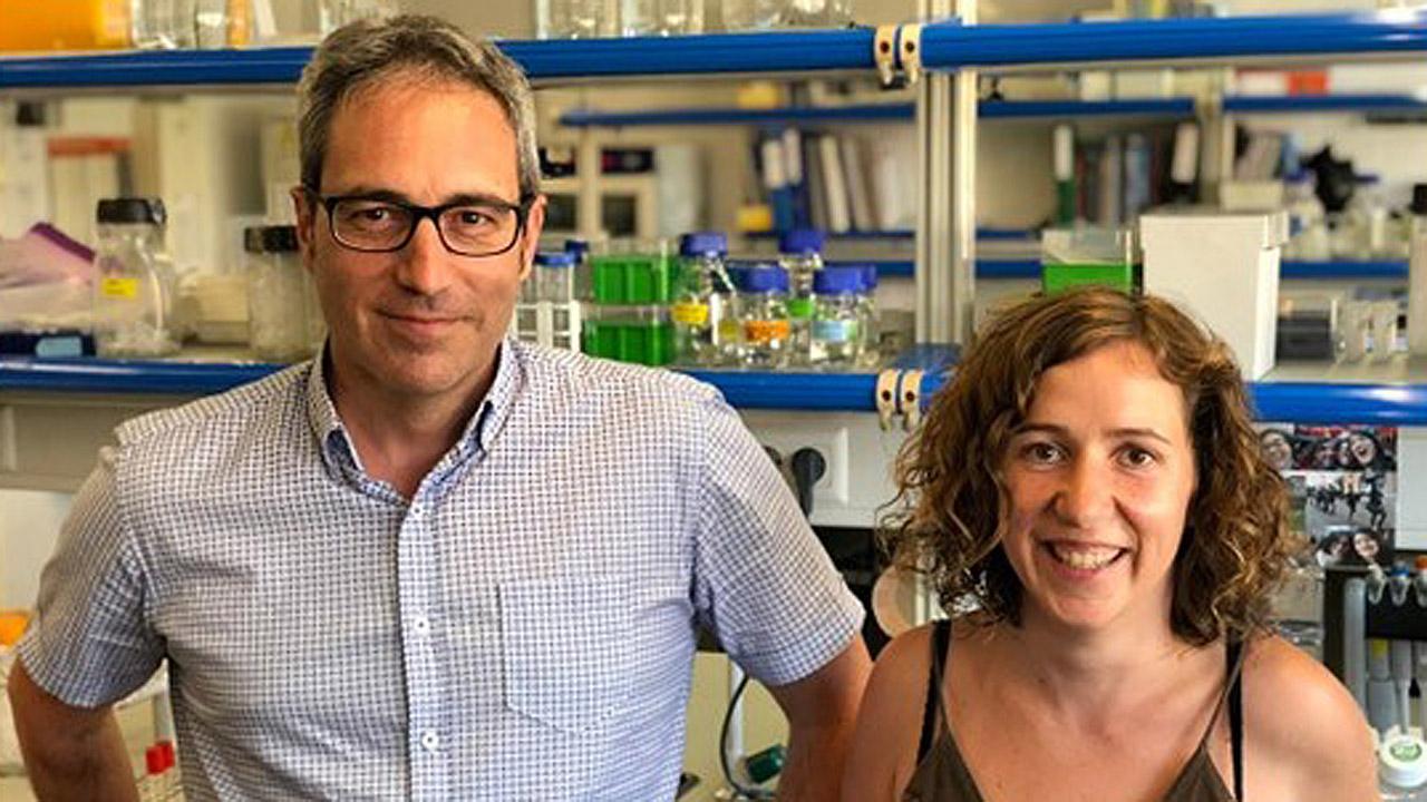 Los investigadores Bru Cormand y Noèlia Fernàndez Castillo, de la Facultad de Biología y el Instituto de Biomedicina de la Universidad de Barcelona, el Ciberer y el Irsjd.