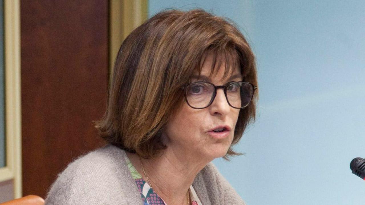 Nekane Murga, consejera de Sanidad del País Vasco, en una comparecencia en la Comisión de Sanidad del Parlamento Vasco.